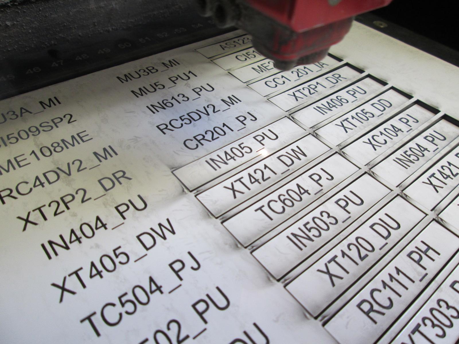 Cat-1.3-Laser-engraved-labels